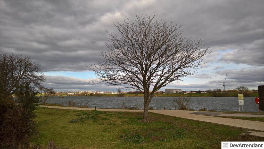 """The Paddock Community Nature Park"""
