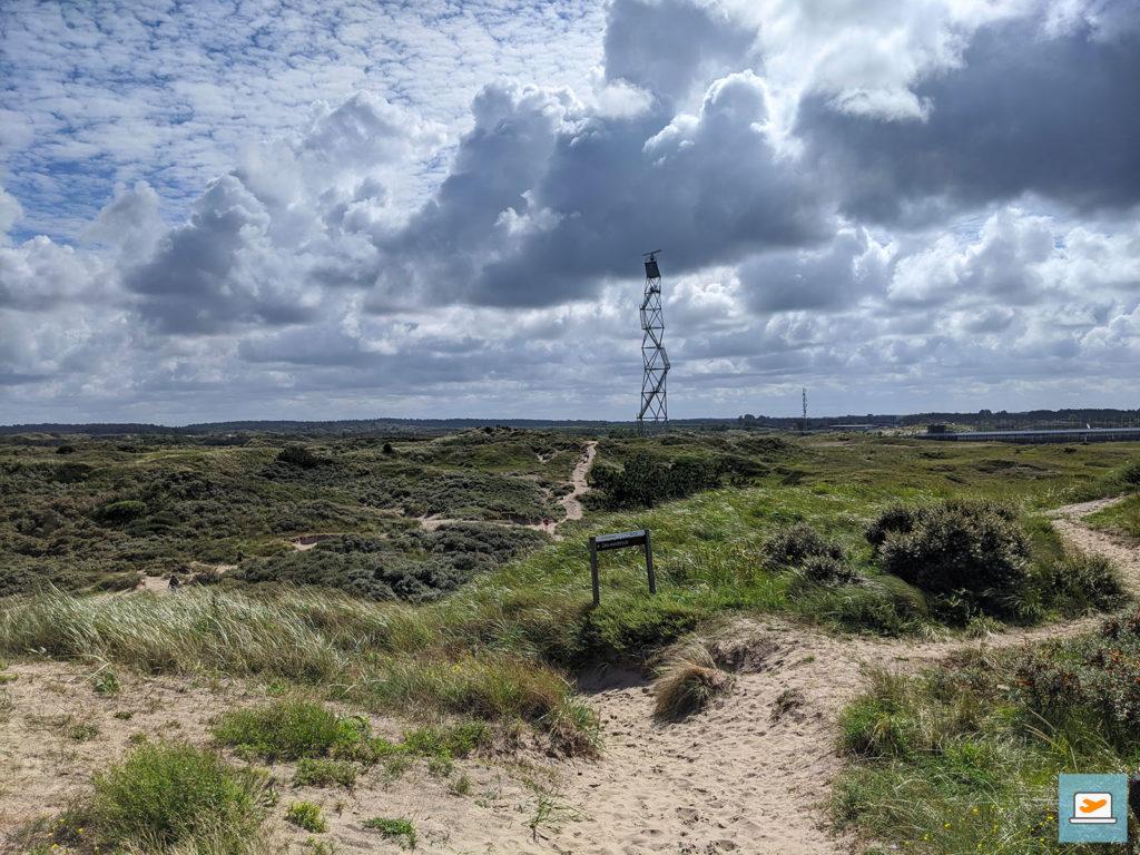 Der Weg näher an die Strecke führte durch eine Dünenlandschaft