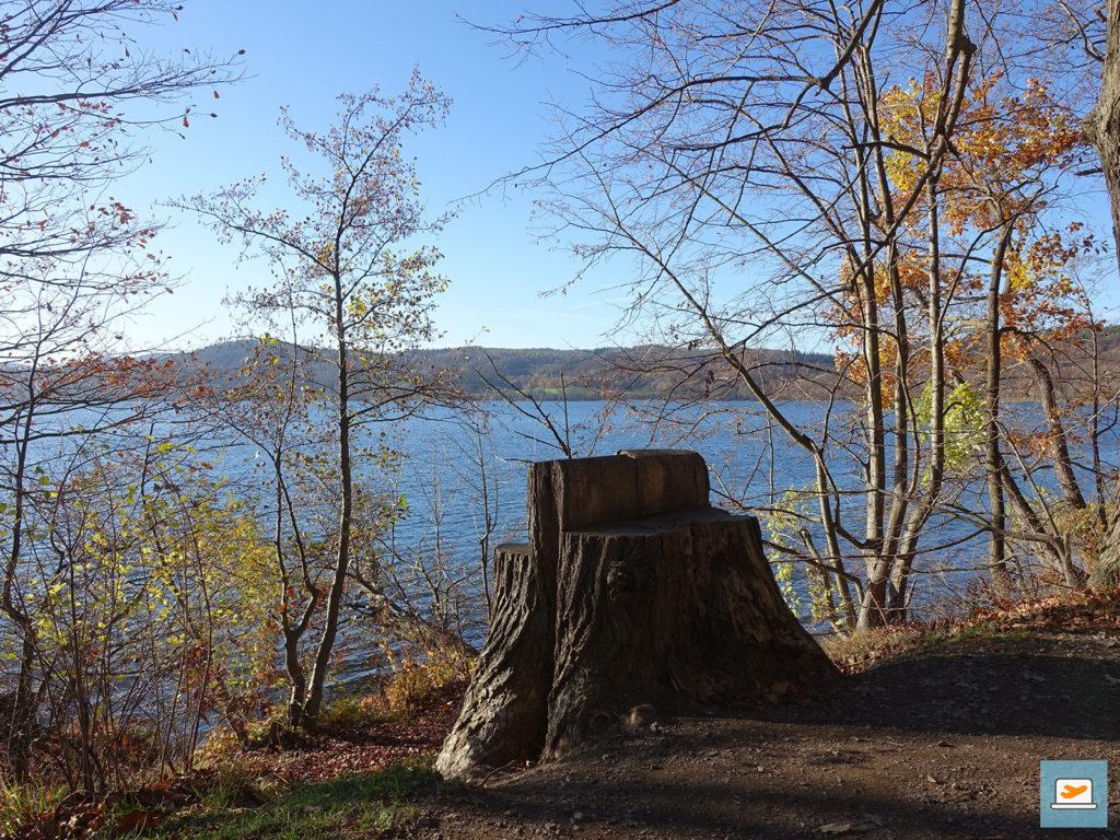 Der Baumstamm lud als Sitzplatz zur Pause ein